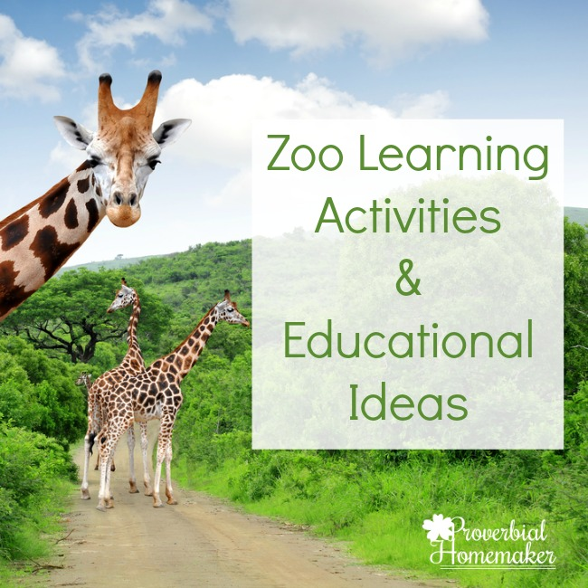 Zoo Learning Activities & Educational Ideas For Fun!