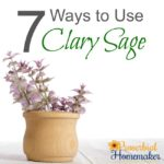 7 Ways to Use Clary Sage Essential Oil + Recipes!