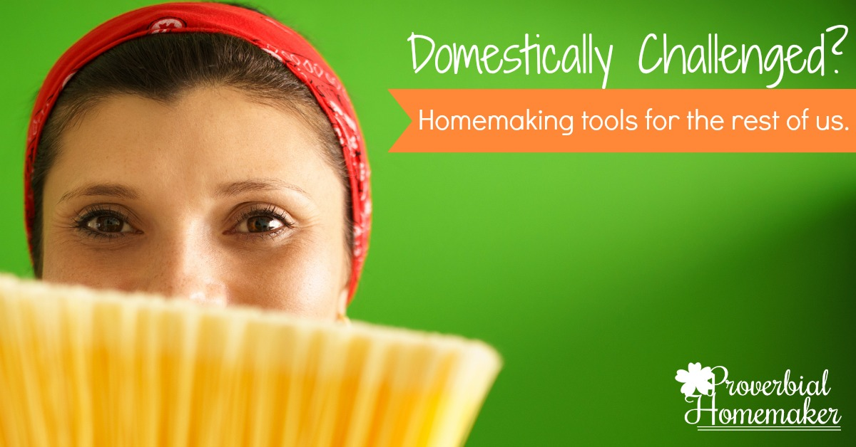 Help and Hope for the Domestically Challenged: Homemaking tips and resources for the rest of us.