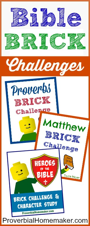 Kids learn the Bible while playing with bricks!