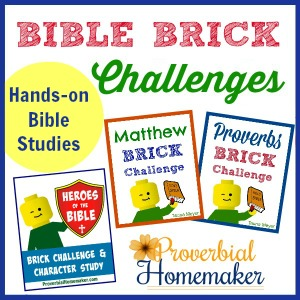 Teach God's Word with fun studies and build challenges!
