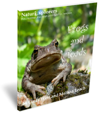 Frogs-and-Toads-3D-Cover