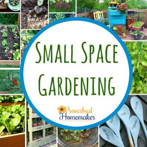 Small space gardening! So many fun ideas and tips here.