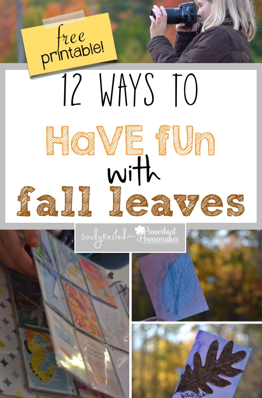 Have Fun with Fall Leaves