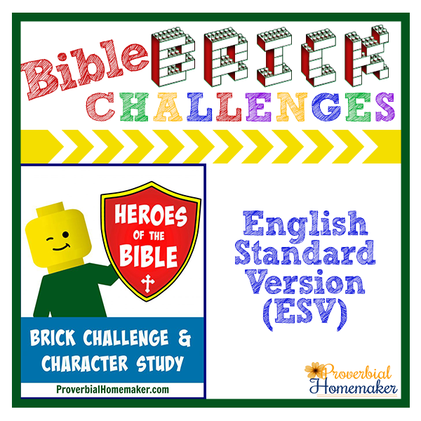 heroes-of-the-bible-esv-brick-challenge-product-image