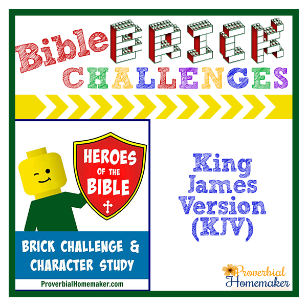 heroes-of-the-bible-kjv-brick-challenge-product-image
