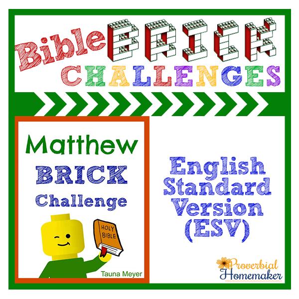 matthew-esv-brick-challenge-product-image
