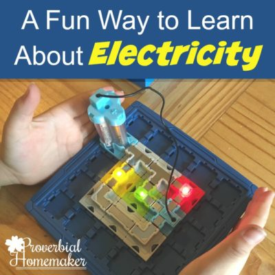 Logic Puzzles: Fun Way to Learn About Electricity