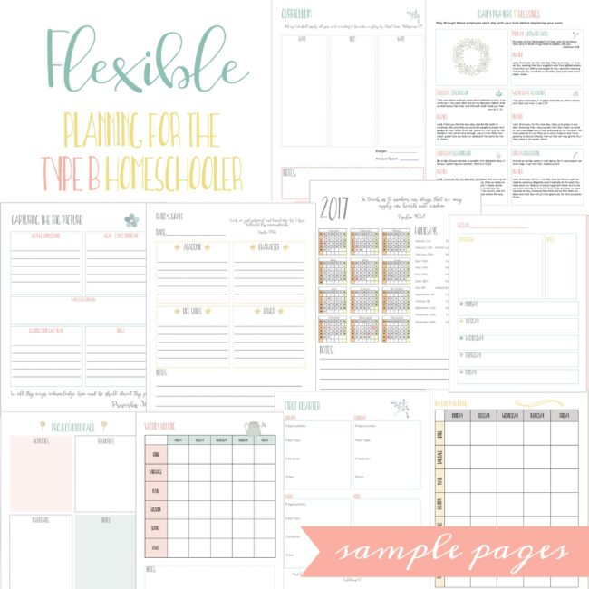 Don't miss this introductory price on the NEW Relaxed Mom Homeschool Planner & eCourse!