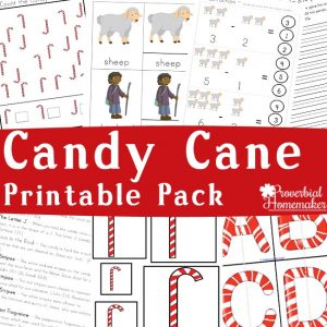 Download the Candy Cane Printable Pack (78 pages) for a fun way to learn about Jesus, the legend of the candy cane, and enjoy some Christmas learning!