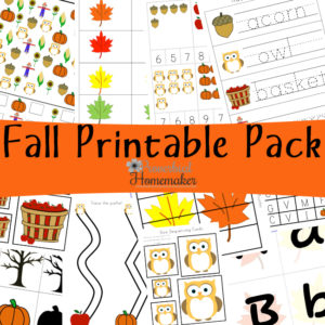 Download this free fall printable pack for a fun way to study the season with your kids! 80+ pages for children ages 2 - 9 - games, vocabulary, and more!
