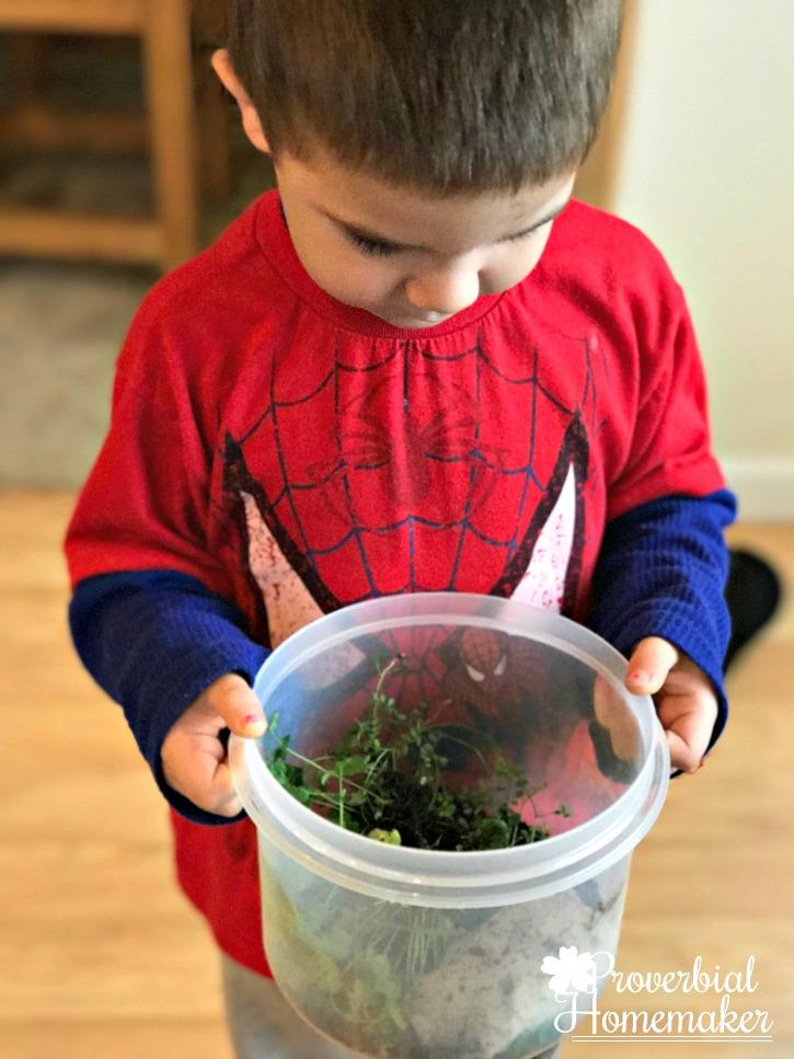 DIY Terrarium - when the toddler wants to make his own terrarium :)