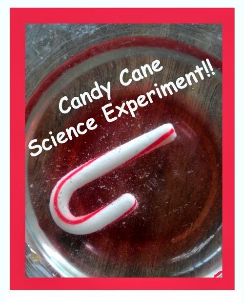 Candy Cane dissolving experiment