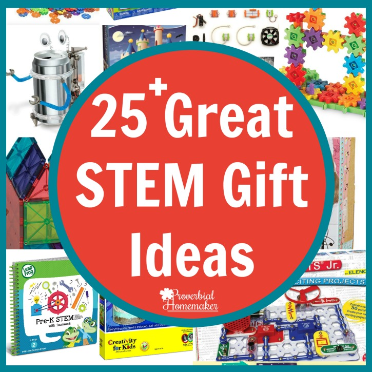 25 Great Stem Gift Ideas Proverbial Homemaker