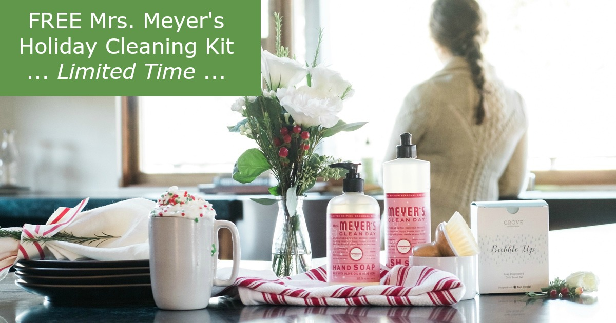 LOVE Mrs. Meyer's and you can get this holiday set FREE for a limited time It's like a kick of Christmas in the kitchen. Orange Clove is one of my favorite scents, too!