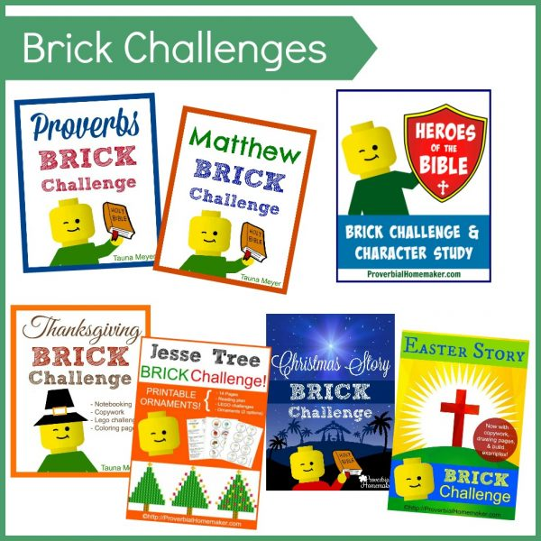 Brick Challenges (Digital)
