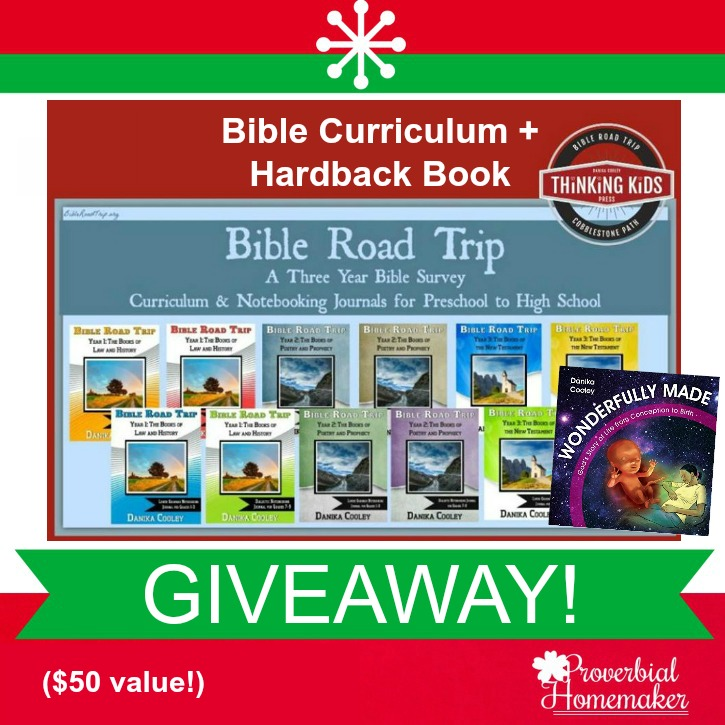 Our Favorite Bible Curriculum ($50 Giveaway!)
