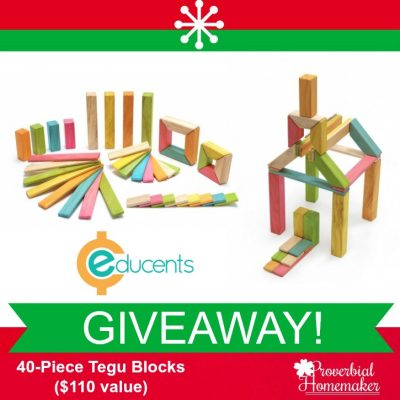 Tegu Blocks Magnetic Wooden Toys GIVEAWAY!