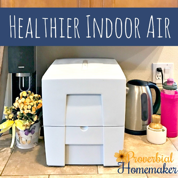 Healthier Indoor Air (& a Dry Skin Solution!)