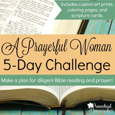 Read, Pray, Love: A Year of Bible Reading & Prayer