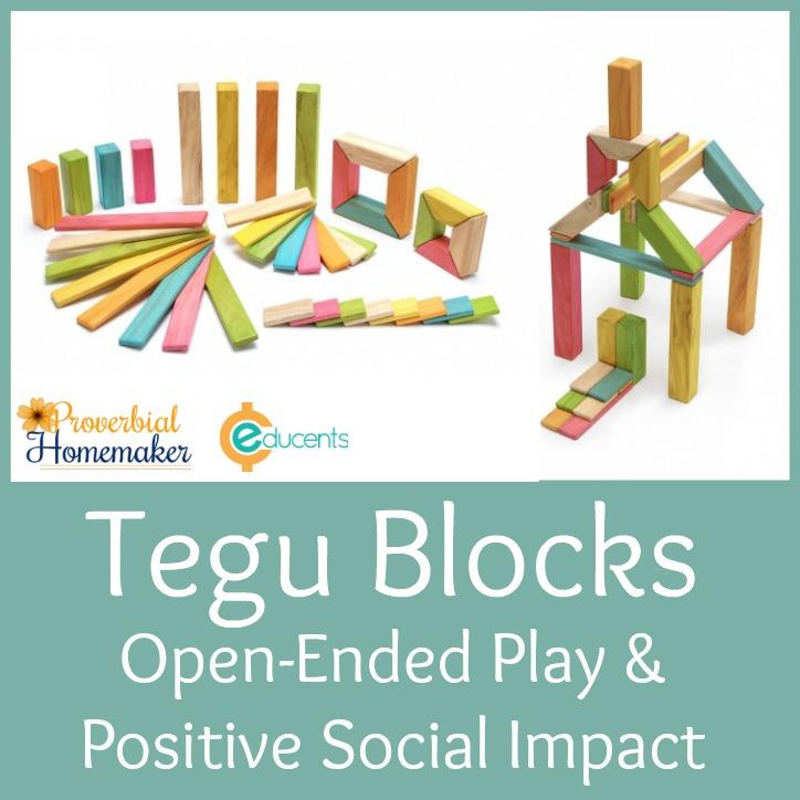 Tegu Blocks: Open-Ended Play & Positive Social Impact!