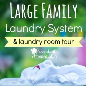 Love the bins! :) - Large Family Laundry System with a Laundry Room Tour