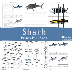 Download the shark printable pack for ages 2-9! Great printable for shark week or anytime of year!