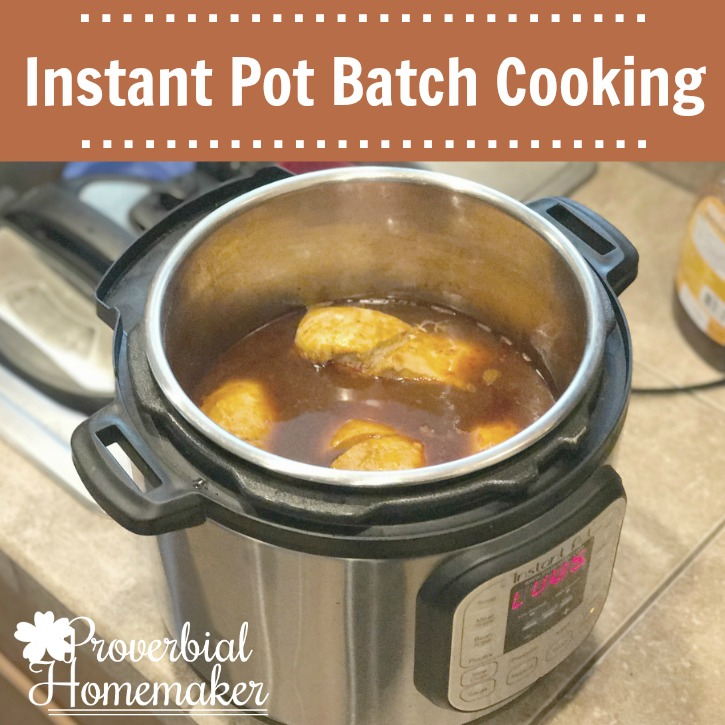 Instant Pot Batch Cooking (Save time and energy!)