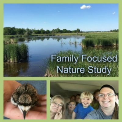 Family Focused Nature Studies (+ Free Free Cricket Unit and Nature Study!)