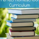How to Choose the Perfect Homeschool Curriculum