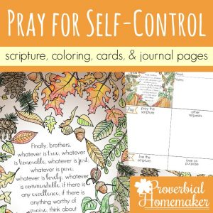 Begin praying for self-control in yourself, your spouse, and your kids! Beautiful scripture art prints, cards, & journal pages help you pray diligently!