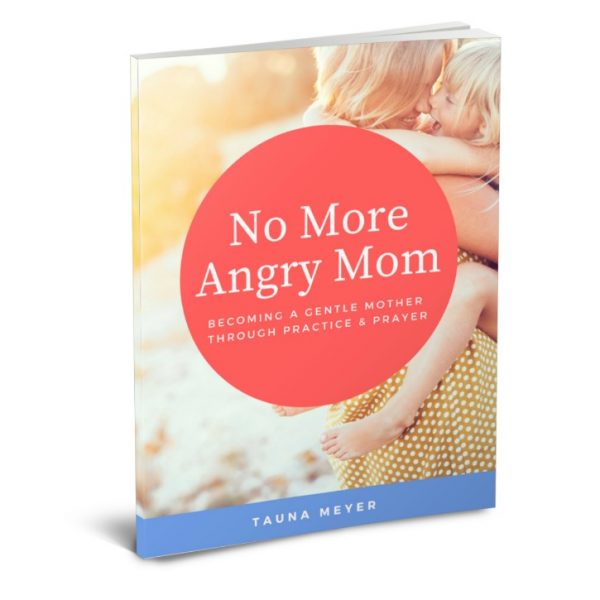 No More Angry Mom ebook - learning to become a gentle and joyful mom through practice and prayer