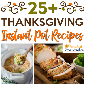 Check out this fantastic list of Instant Pot Thanksgiving recipes! These would be perfect for Thanksgiving day or for a holiday party. I'm going to try the pumpkin pie one next!