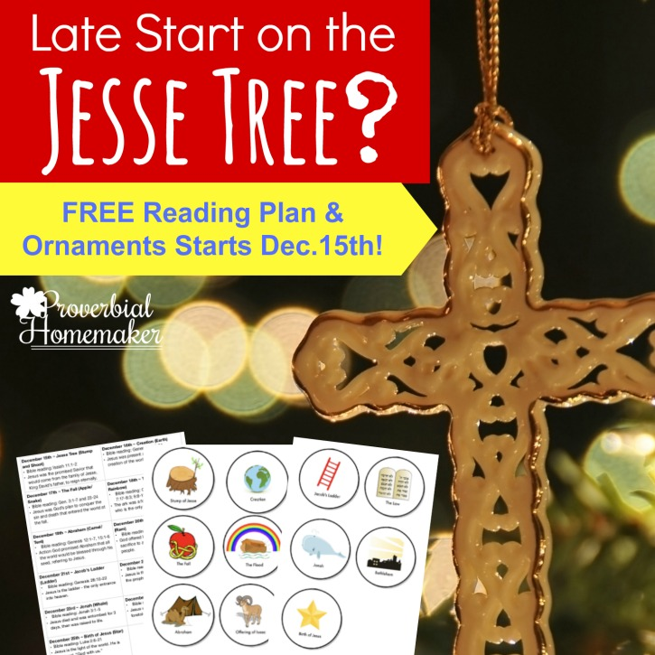 Did you get a late start on the Jesse Tree this year? Download this FREE reading plan with ornaments that starts on December 15th!