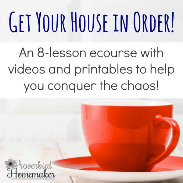Get your house in order with this step-by-step video course that helps you get control over your home and manage the chaos! The course includes lifetime access and eight lessons that you can go through at your own pace.