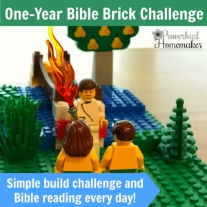 Start with January in the One-Year Bible Brick Challenge! It includes a simple reading plan and a daily Lego build project throughout the month.