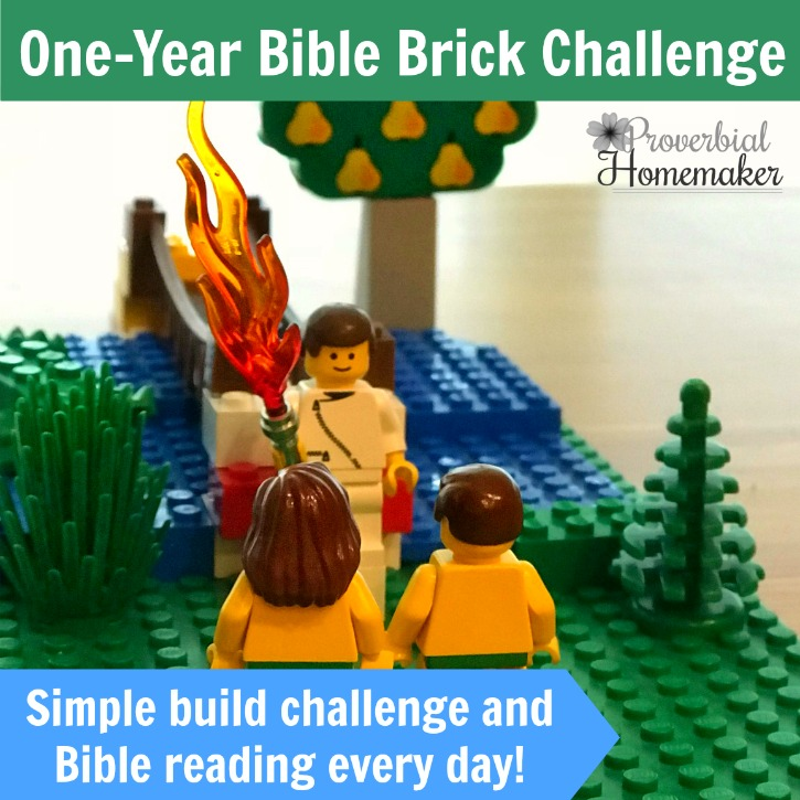 One Year Bible Brick Challenge – January Calendar