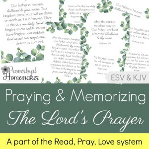 Memorize the Lord's Prayer - then pray the Lord's Prayer over your family! These beautiful scripture cards, art prints, and prayer/teaching guides come in ESV and KJV, and can be used alone or as a part of the Read Pray Love system at Proverbial Homemaker.