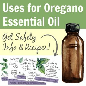 Best uses for Oregano essential oil including safety information, recipes, and more!