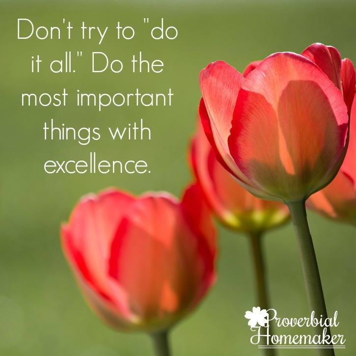 don't try to do it all do the most important things with excellence - Tauna Meyer