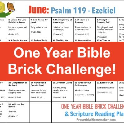 June One Year Bible Brick Calendar (Psalm 119 – Ezekiel)