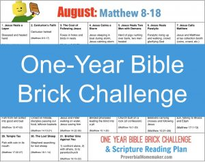 August One Year Bible Brick Challenge - Matthew 8 - 18 Build with Legos as you read the Bible together!