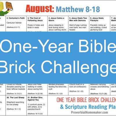 August One Year Bible Brick Challenge Calendar (Matthew 8 – 18)