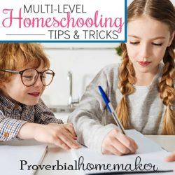 Struggling to teach multiple grades? You'll love these multi-level homeschooling tips and tricks for a one room schoolhouse!