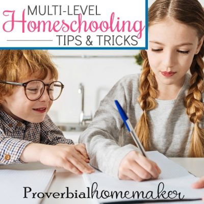 Multi-Level Homeschooling Tips and Tricks (3-Winner Giveaway for The Mystery of History!)