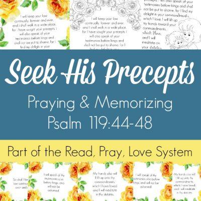 Seeking His Precepts (Praying and Memorizing Psalm 119:44-48)