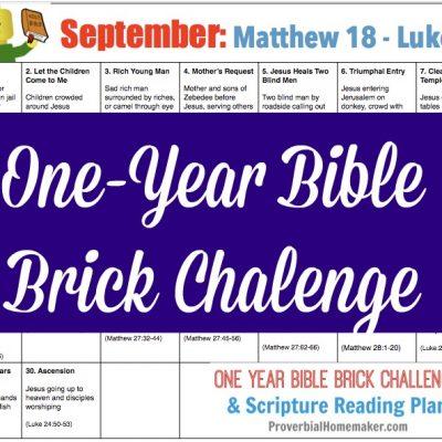 September One Year Bible Brick Challenge Calendar (Matthew 18 – Luke 24)