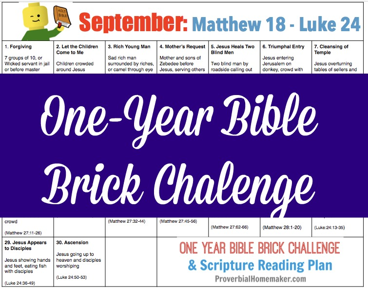 Teach your kids the Bible while they build with Legos! The September calendar for the One-Year Bible Brick Challenge goes from the middle of Matthew through Luke. Enjoy!