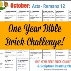 Teach your kids the Bible while they build with Legos! The October calendar for the One-Year Bible Brick Challenge goes from Acts to Romans 12. Enjoy!