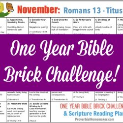 Teach your kids the Bible while they build with Legos! The November calendar for the One-Year Bible Brick Challenge goes from Romans 13 to Titus. Enjoy!